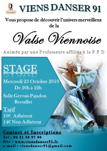 Stage VALSE VIENNOISE